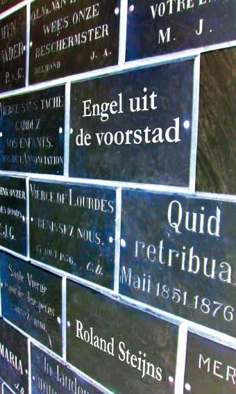 Roland Steijns: Engel uit de voorstad